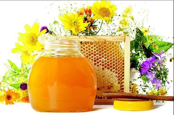 Мед для медового спаса