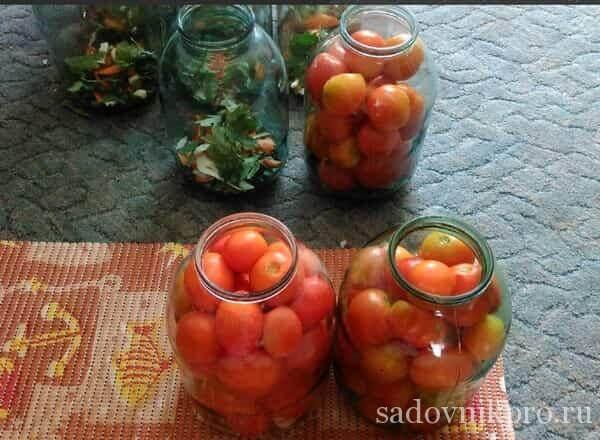 Маринованные помидоры с аспирином на зиму