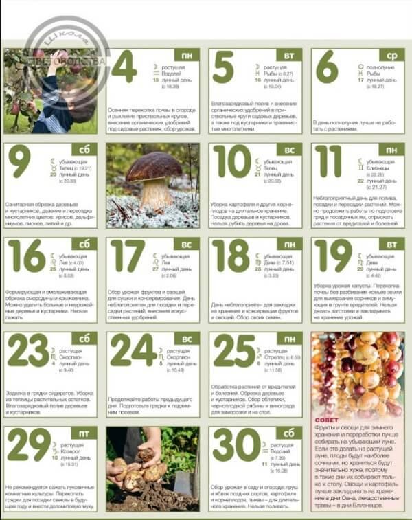лунный календарь садовода на сентябрь 2017 года благоприятные дни