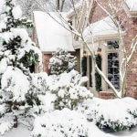 Работы на даче в январе: что нужно сделать в саду, огороде, цветнике