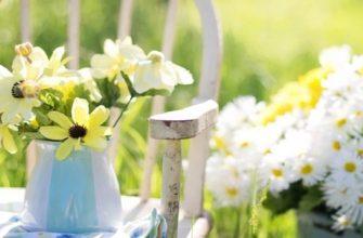 Лунный посевной календарь на июнь 2020 садовода и огородника