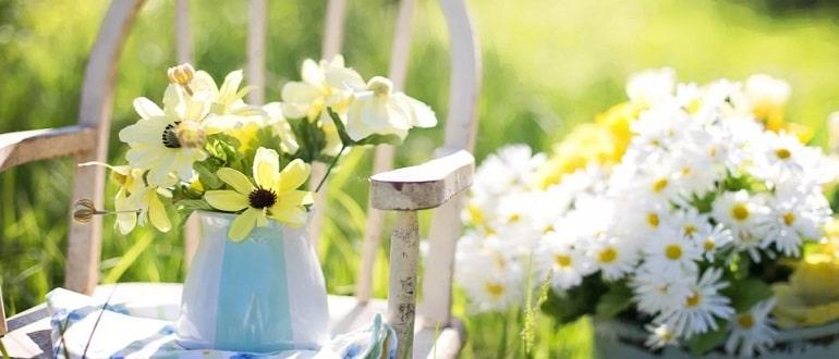 Лунный посевной календарь на июнь 2021 садовода и огородника